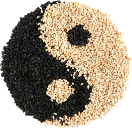 yin-yang Macrobiótica